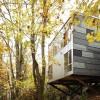 Treehouse – ABD