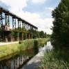 Ekolojik Restorasyon ve Peyzaj Tasarımı