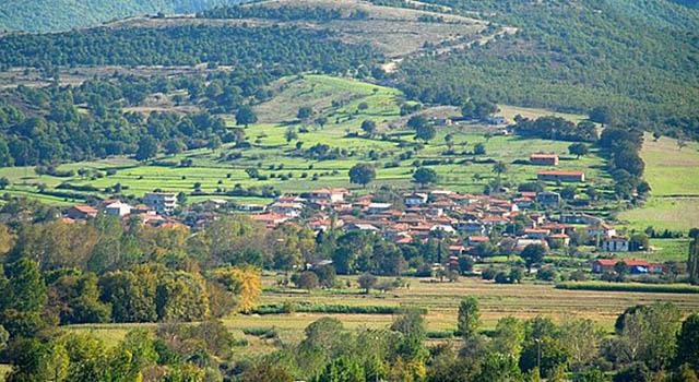 Biga'da 100 Bin Ağaç Kesilecek