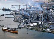 Marmara, Ekolojik Yıkıma Karşı Birleşiyor