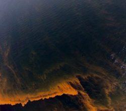 Marmara Denizi'ni temizlemek 5 milyar dolar