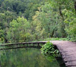 Milli Parklarda Yapılaşmaya Danıştay'dan Durdurma