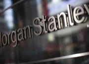 OECD ve Morgan Stanley'den Türkiye'ye büyüme tahmini!