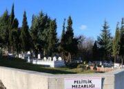 Samsun'da orman alanını kaçak mezarlık yapıp parsel parsel sattılar!