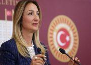 Ankara'da kurulacak Yavuz Sultan Selim Mahallesi mecliste konu oldu!