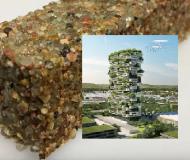 Geleceğin Yapılarında Beton Değil Bakteri Olacak
