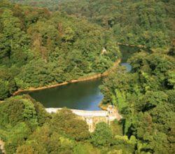 Belgrad Ormandı, Park Oldu!