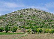 """Çandır Köyü, """"Yeşil Tepe Yeşil Kalacak"""" Davasını Kazandı"""