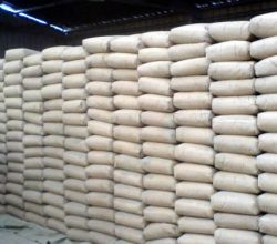 'Çimentoda İç Talep Yüzde 5 Büyüyecek'