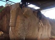 IŞİD, Ninova'da Antik Heykelleri Parçaladı