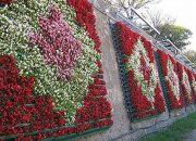 İstanbul Çiçek Açtı: 32 Milyon TL!