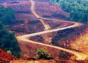 3. Köprü Güzergahındaki Ormanlara Otel ve AVM Yapılacağı İddia Ediliyor