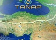 TANAP'a küresel ilgi