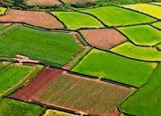 Verimli araziye sit alanı dokunulmazlığı