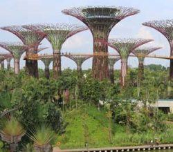 400 Bina 'Yeşil' Tescili Bekliyor