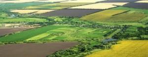 2,5 Milyon Futbol Sahası Büyüklüğünde Tarım Arazisi Yok Oldu